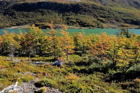 Los Glaciares National park  photo