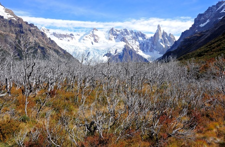 Cerro Torre mountain  Los Glaciares National park  photo