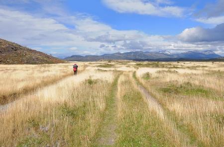 pain�: Parco Nazionale Torres del Paine