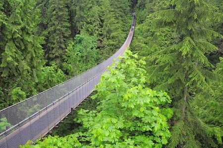 pedestrian bridge: Capilano suspension bridge  North Vancouver  Canada   Stock Photo