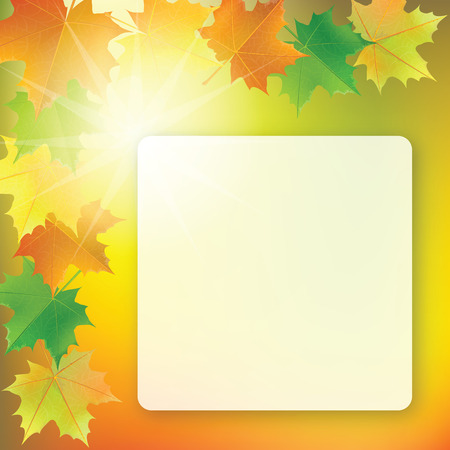 School board on colorful background with maple leaves in the corners