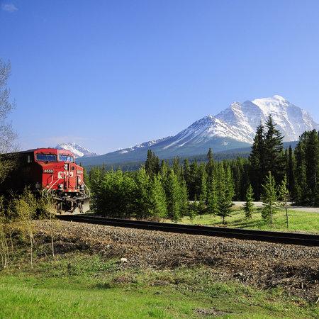 Lungo treno merci passa da Calgary a Vancouver e l'approccio alla stazione il 09 giugno 2011 a Lake Louise, Canada Archivio Fotografico - 30709009