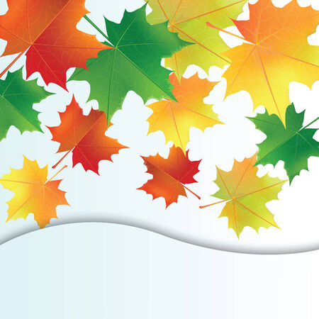 Autumn leaves on the white Greeting card  Illustration