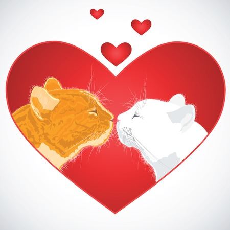 beloved: Two beloved cats on the heart shape background. Vector illustration.