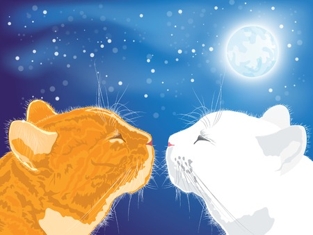 beloved: Two beloved cats on the night sky background. Vector illustration.