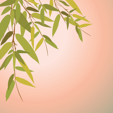 Bamboo trees and leaves at sunset time. Vector illustration. Illustration