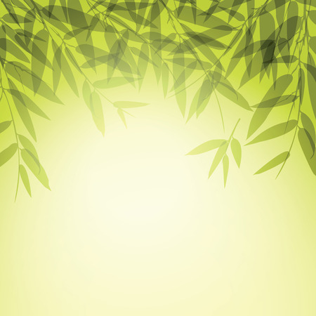 asian gardening: Bamboo trees and leaves at sunset time.