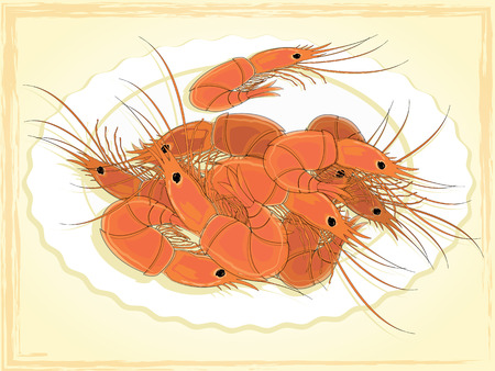 shrimp cocktail: Prepared shrimps on the white plate. Vector illustration. Illustration