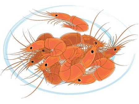 krill: Prepared shrimps on the white plate. Vector illustration. Illustration
