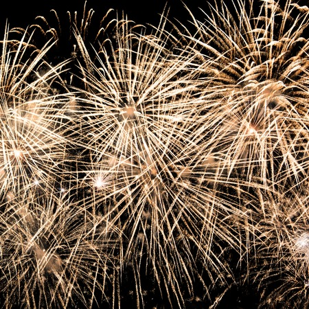 'new year's day': Fireworks. Day of the city celebration at evening time.