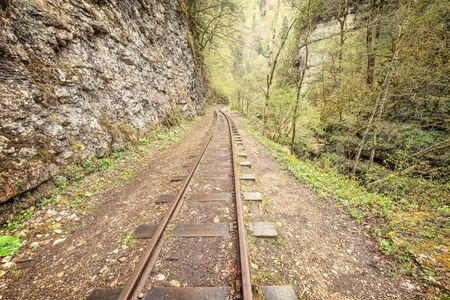 narrow gauge: Narrow gauge railway. Guama gorge. Caucasus. Russia.
