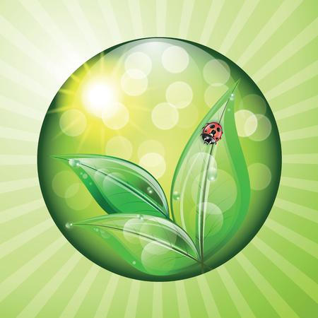green environment: World environment day sign on green background. Vector illustration. Illustration