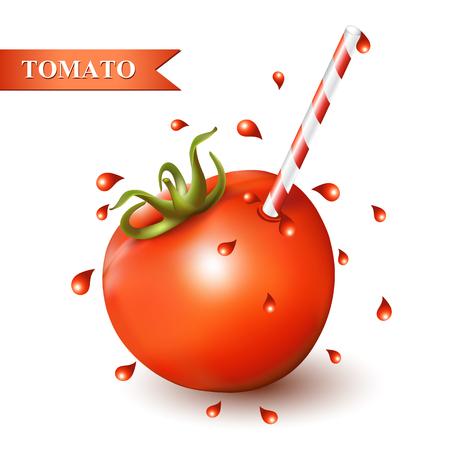tubule: Red fresh tomato with tubule on white background. Illustration