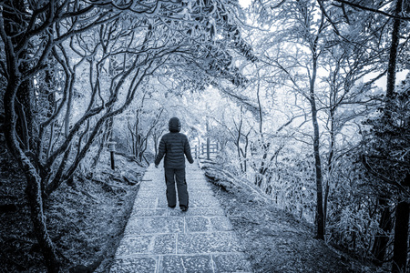 lonelyness: Young woman on the small road in Huangshan National park. Stock Photo