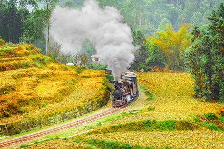 Steam narrow-gauge train moves from Yuejin to Bagou through the chinese countryside. Jiayang Mining Region. Sichuan province. China