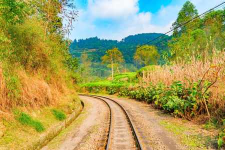 Steam narrow-gauge railway from Yuejin to Bagou in the jungle. Jiayang Mining Region. Sichuan province. China.