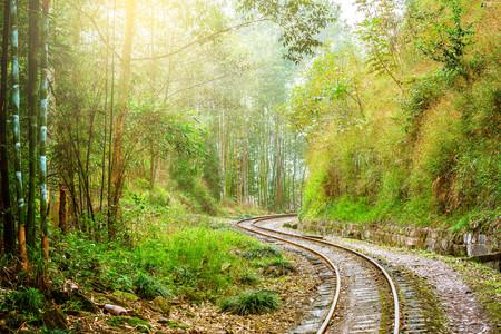 Narrow-gauge railway from Yuejin to Bagou in the jungle.