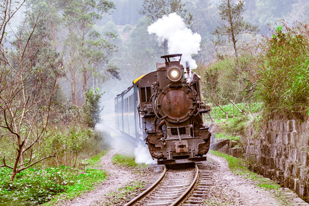 Steam narrow-gauge train moves from Bagou to Yuejin through the jungle. Jiayang Mining Region. Sichuan province. China.