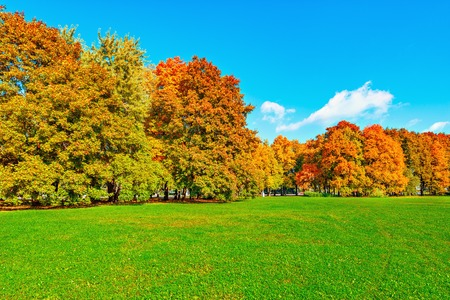 Autumn view of the city park at sunny day time. Stock Photo