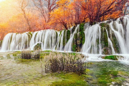 withering: Autumn view of the waterfall with pure water at sunrise time. (Jiuzhaigou nature reserve) Jiuzhai Valley National Park, China.
