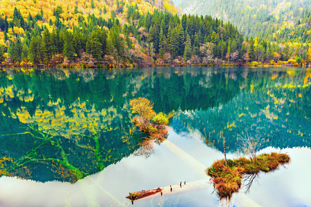 withering: Autumn view of the lake with pure water at early morning time. (Jiuzhaigou nature reserve) Jiuzhai Valley National Park, China.
