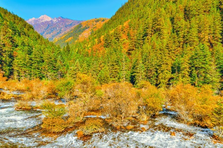Autumn view of Pearl Shoals with pure water. Jiuzhaigou nature reserve, Jiuzhai Valley National Park, China Stock Photo