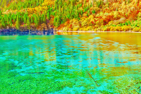View of Five Flower Lake at autumn sunrise time. Jiuzhaigou nature reserve, Jiuzhai Valley National Park, China.