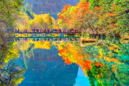 Trees by the colorful lake at autumn day time. Jiuzhaigou nature reserve, Jiuzhai Valley National Park, China. Foto de archivo