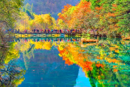 Trees by the colorful lake at autumn day time. Jiuzhaigou nature reserve, Jiuzhai Valley National Park, China. Stockfoto