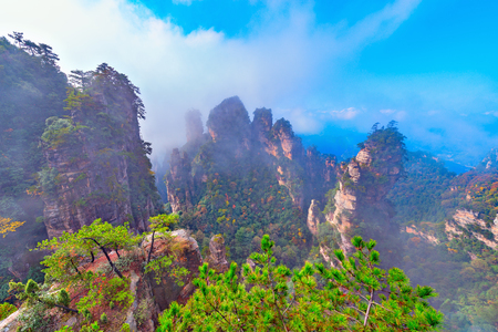 Fog above the colorful cliffs in Zhangjiajie National Forest Park at autumn morning day time.. China. Stock Photo