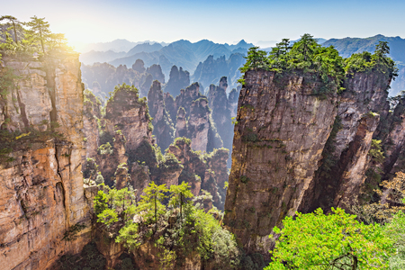 Colorful cliffs in Zhangjiajie Forest Park at sunrise time.