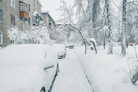 Cars under the snow. Stok Fotoğraf