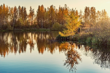 Autumn birch trees by the lake at sunset time.