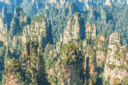 Colorful cliffs in Zhangjiajie Forest Park at sunny evening time. China.