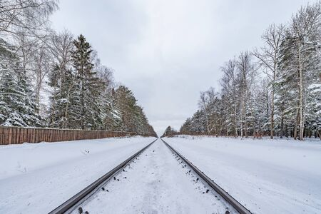 Railway track in the winter forest.