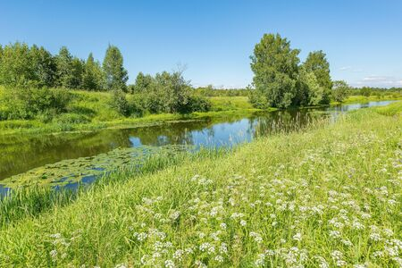 River and the meadow on a sunny summer day. Imagens