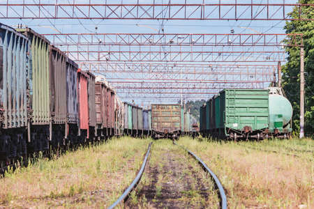 Freight trains stand on the station at day time. 免版税图像