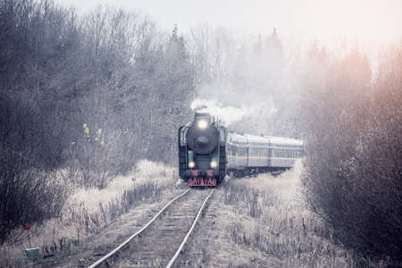 Steam train moves at autumn foggy morning.