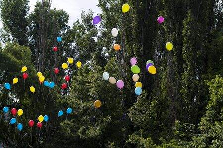 social actions: balloons in the sky against trees, the last call school, a holiday
