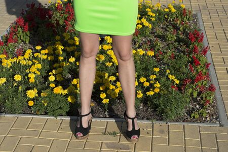 reddening: the image of feet of the woman against a flower bed