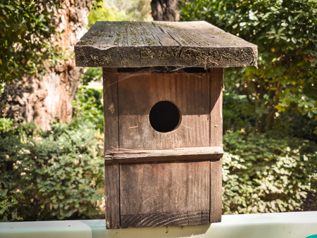 Nest box in wood for birds