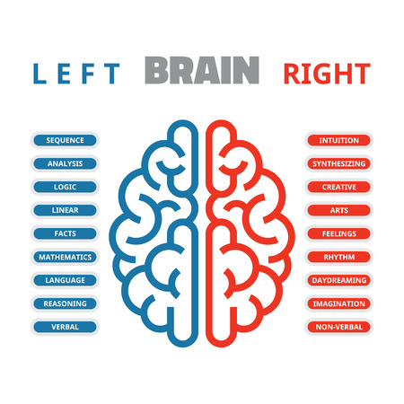facts: Left and right human brain vector illustration for presentation, booklet, web site and other projects. Left and right human brain infographic.