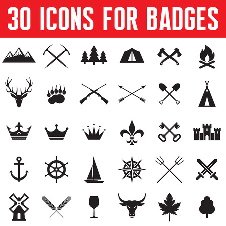 30 Icons for Badges and Design Works.  Vector