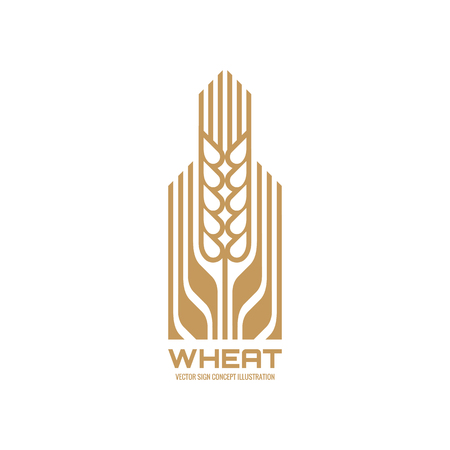 agriculture icon: Ear of wheat - vector  concept illustration. Cereal. Organic. Ecology. Bio. Nature. Agriculture. Vector template. Design element. Illustration