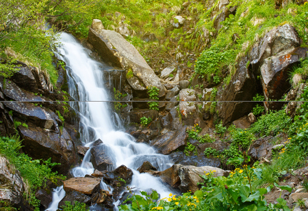 Waterfall in spring forest. Beautiful nature background.