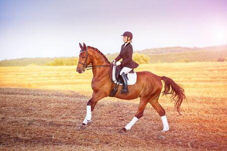 woman riding a horse. Equestrian sportswoman jockey