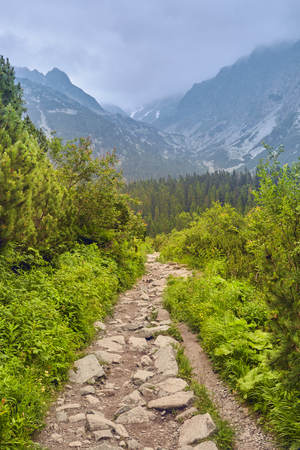 Walk to the High Tatras, Slovakia. Europe. Stone trail in the mountains with a beautiful view of the mountains and woods Stock Photo