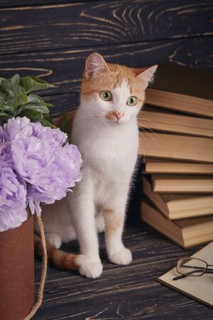 The cat is sitting behind a flower pot. The cat is sitting next to an open book