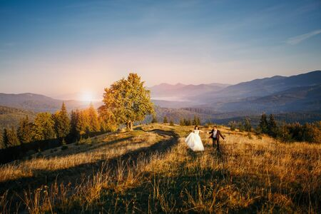 Romantic newlywed couple in mountain. Walk lawn Stock fotó