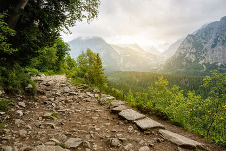 Stones trail in high mountains. Peak peaks in the fog. Vacation and traveler concept. Adventurer Concept. High Tatras mountains.